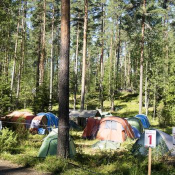 Roihu 2016 oli partioleiri ja metsäfestarit