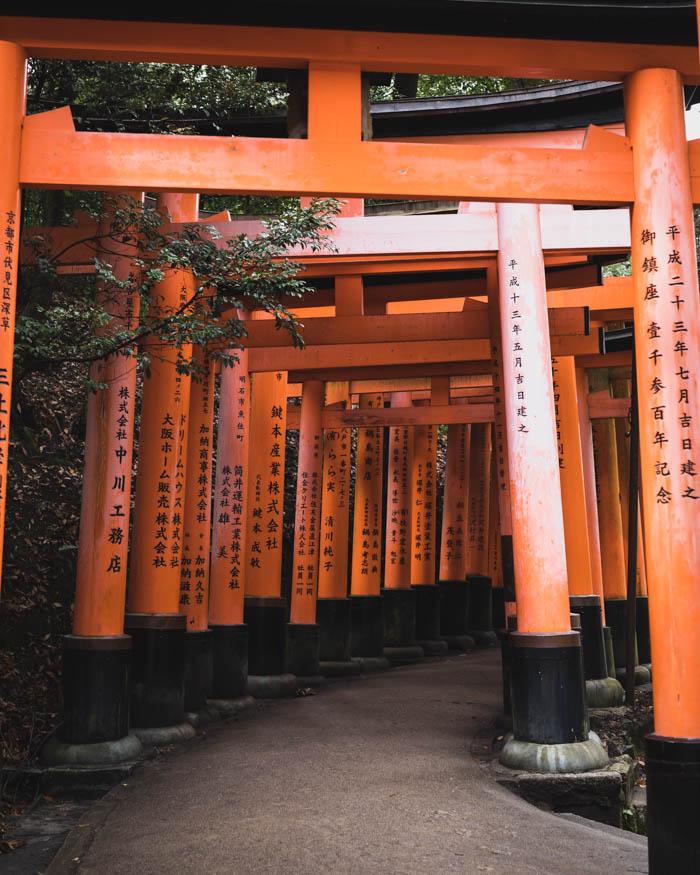 Japani, Kioto - kokemuksia ja nähtävyyksiä   Japaninmatka vinkkejä