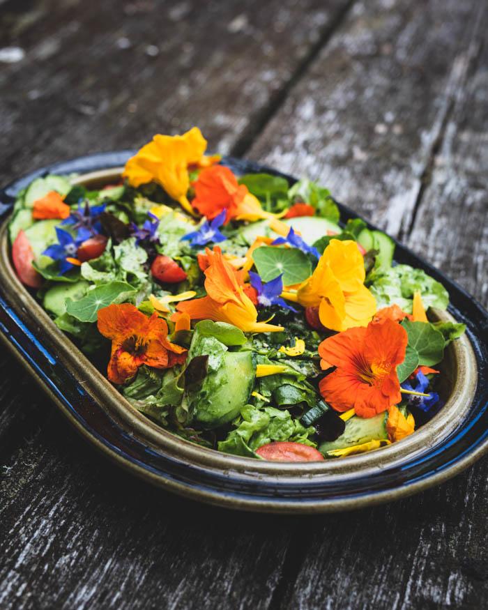 Kukkatarhurin salaatti